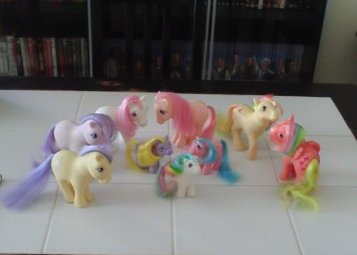 premiers poneys.JPG
