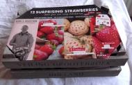 kit fraises.JPG