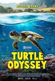 Turtle_Odyssey.jpg