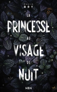 La princesse au visage de nuit.jpg