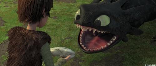 dragons apprivoiser.jpg