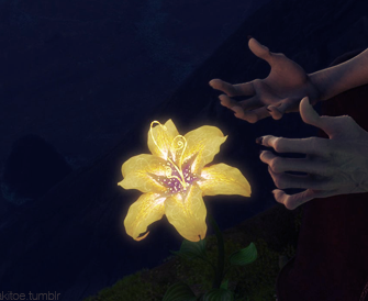 raiponce fleur.png