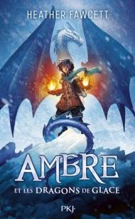 ambre-et-les-dragons-de-glaces-1459446.jpg