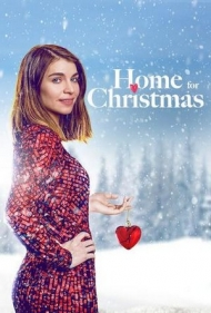 home for christmas saison 2.jpg