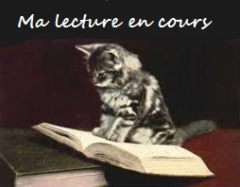 lecture en cours.jpg